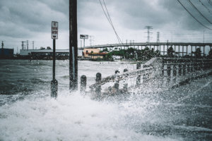 Trust Transparency Experiences from Hurricane Harvey