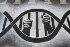 DNA Testing – Panacea or Pandora's Box